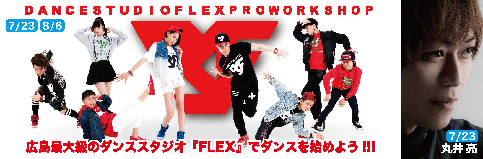 hp-flex-14